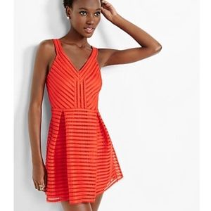 Express Mesh V-neck Pleated Fit And Flare Dress